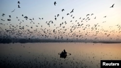 В СМИ и социальных сетях Абхазии обсуждается в эти дни любопытное природное явление: сотни тысяч птиц (около тридцати видов) проводят зимовку в районе устья реки Кодор, в окрестностях озера Скурча
