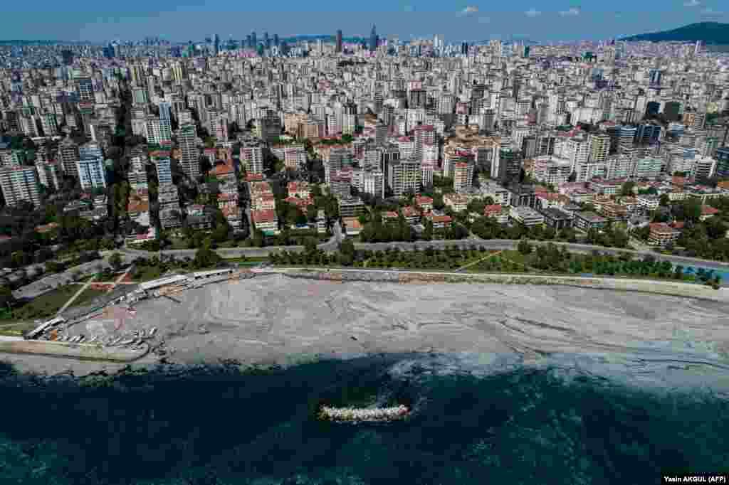 Гавани, берега и крупные водоемы Мраморного моря покрыты густым серым веществом