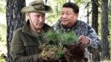 Владимир Путин и Си Цзиньпин. Коллаж