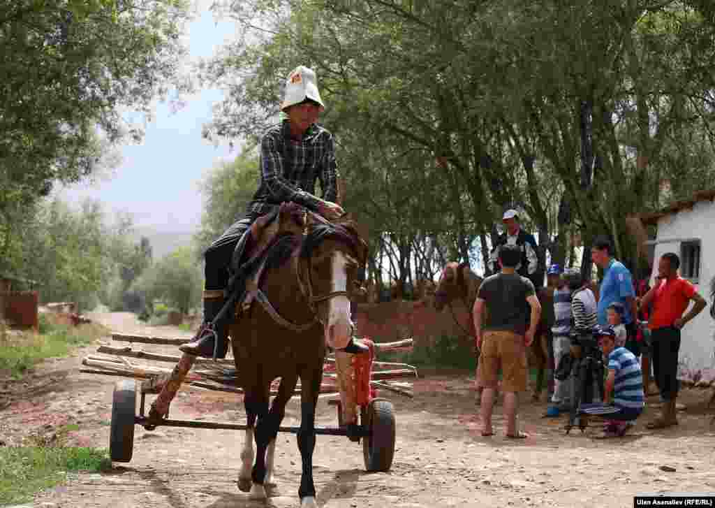 Лошадь - незаменимый помощник человека в сложных условиях высокогорья