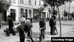 România - evrei scoși la muncă forțată, Cernăuți