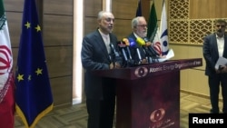 Iran's nuclear chief, Ali Akbar Salehi (left), speaks during a joint press conference with European Commissioner for Energy and Climate Miguel Arias Canete in Tehran on May 19.