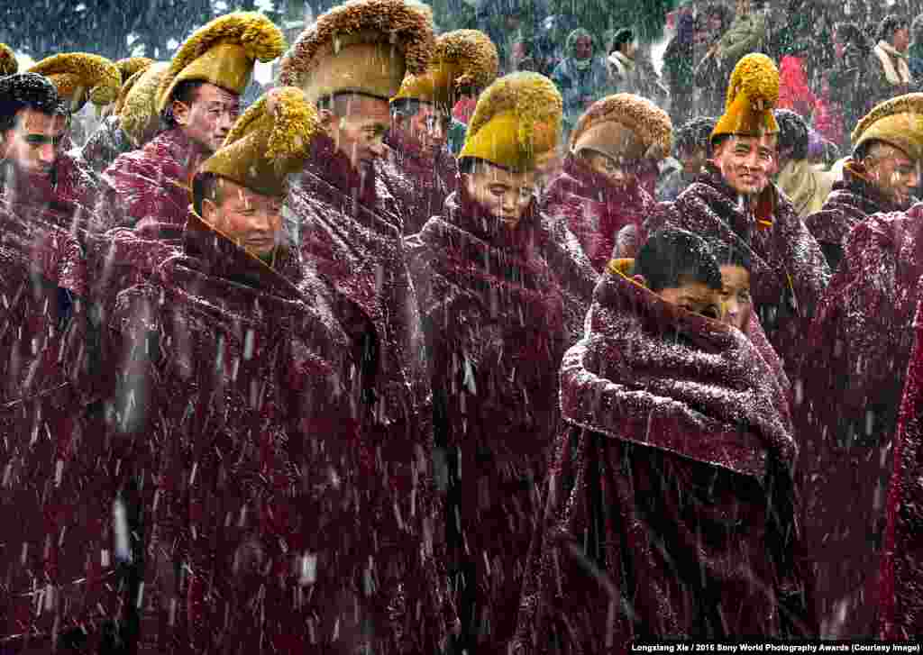 Photographer Longxiang Xie of China: Snowing Heavily Buddhist monks walking to a ceremony in heavy snow at the Langmu Temple, China