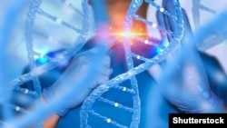 Genetic engineering DNA genes CRISPR
