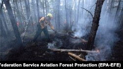 Firefighters fighting wildfires in the taiga, or boreal forest, in Russia's Krasnoyarsk region on August 1.
