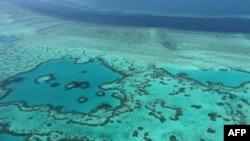 Klimatske promjene uveliko se održavaju i na Veliki koraljni greben, Australija