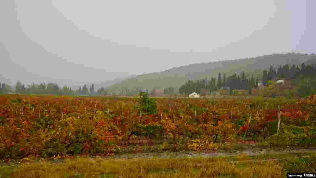 А в долині перед Демерджі – дощ.