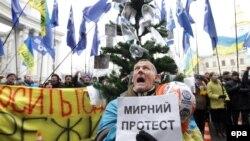 """Участник проевропейской демонстрации держит плакат """"Мирный протест"""". Киев, 18 декабря 2013 года."""