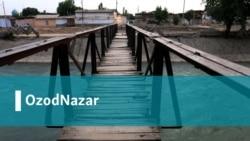 Отаназар Ориповнинг OzodNazarи: