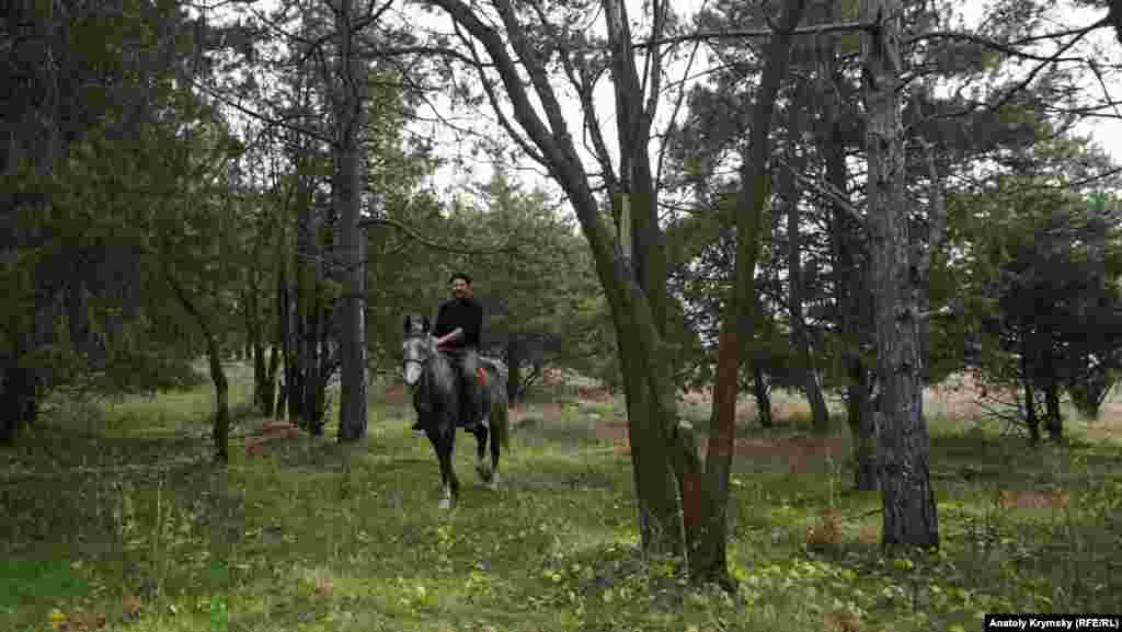 Місцевому козакові не до грибів. Він просто вирішив вигуляти в лісі свого орловського рисака