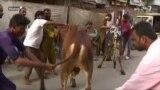 پاکستان، لوی اختر او کورونا