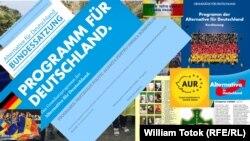 Германската разузнавачка агенција ја стави под надзор целата опозициска партија Алтернатива за Германија