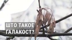 Што такое Галакост?