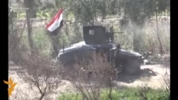 Forcat irakiane largojnë IS-in nga Hiti