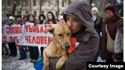 Animal rights activists in Daghestan are outraged at the fact that stray dogs in the Caucasus republic are being slaughtered, which they say is illegal under Russia's Criminal Code. (file photo)