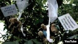 Плюшевые мишки с плакатиками падают на столицу Беларуси, утверждает шведская пиар-компания StudioTotal.