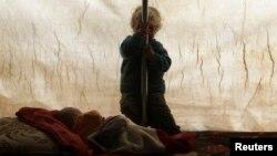 کودک آواره سوری در ادلب