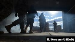 Forcat amerikane
