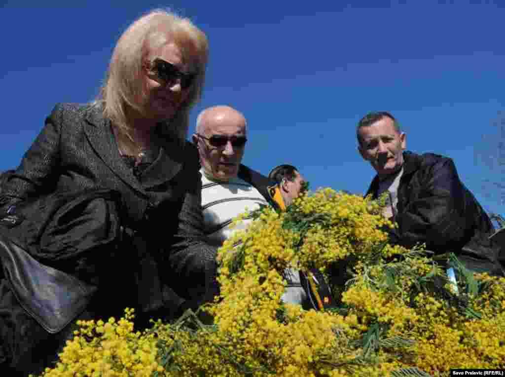 Tradicionalni ¨Dani mimoze¨ u Herceg Novom, 07.02.2011. Foto: Savo Prelević