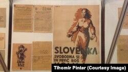 Партизанский плакат Второй мировой войны, музей в Шкофья Локе