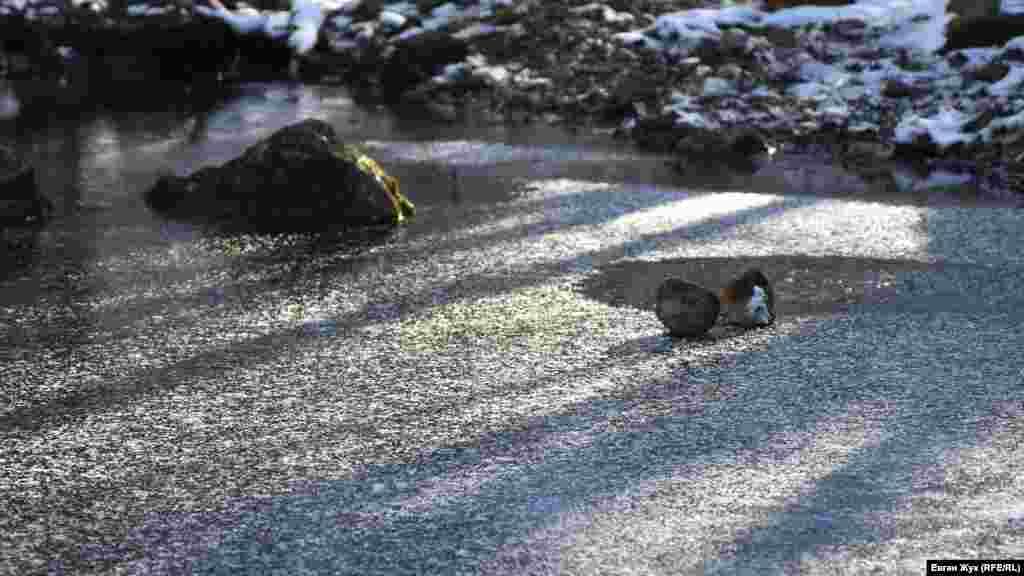 Лед выдерживает скатившиеся со склона небольшие камни