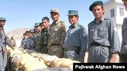 Owgan polisiýasy Türkmenistan-Owganystan serhedinde 650 kg. neşe maddasyny ele geçirýär, Hyrat, 2007-nji ýylyň 23-nji oktýabry.