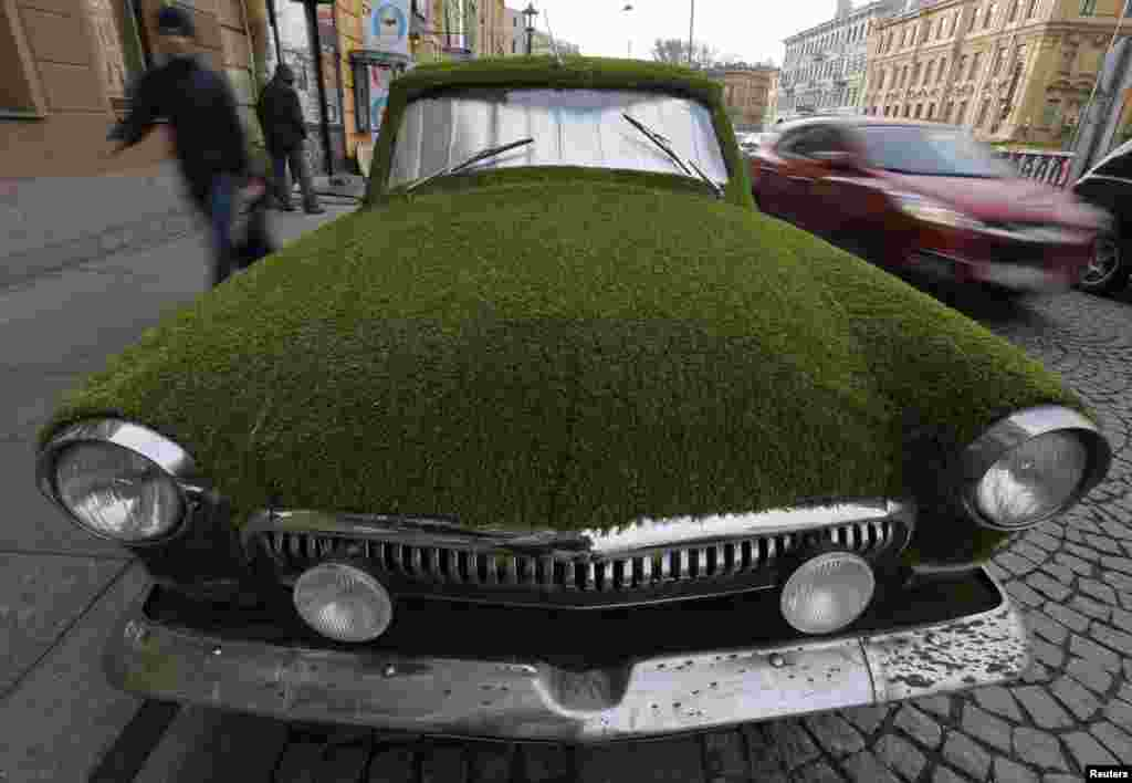 A customized Soviet-era Volga GAZ-21 covered by artificial grass is seen on a parking lot in St. Petersburg. It's being used as advertising for a dairy store. (Reuters/Alexander Demianchuk)