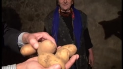 """Kartof satan: """"Xaric belimizi qırıb"""""""
