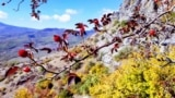 Демерджи-яйла ‒ горный массив Главной гряды Крымских гор в Алуштинском регионе Крыма. Туристические «паломничества» к ее вершинам не прекращаются и с окончанием курортного сезона