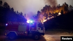 В Португалии горят леса, 18 июня 2017