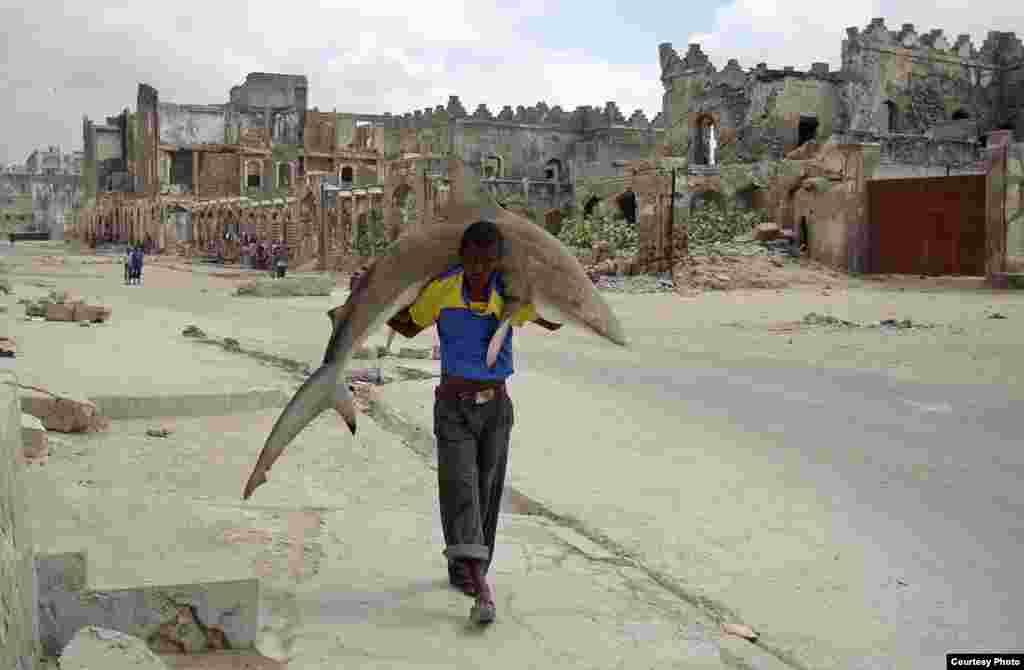 1-е место / Повседневная жизнь / одиночные фотографии Фейсал Омар, Сомали, для Reuters Человек несет акулу по улицам Могадишо, Сомали, 23 сентября 2010.