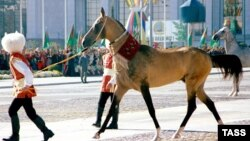 Коня, принадлежащего первому президенту Туркменистана Сапармурату Ниязову, ведут на парад ко Дню Независимости. Ашгабат, 27 октября 2003 года.