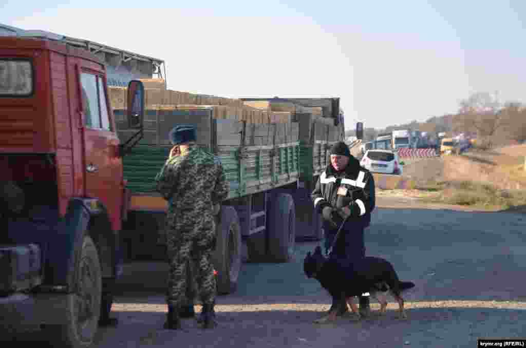 Транспортные средства проверяют специально обученные собаки