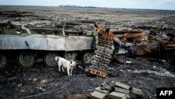 Зьнішчаны танк пад Дэбальцавам