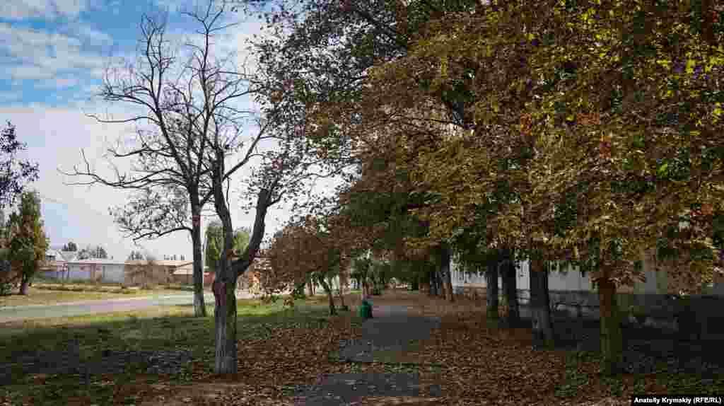 Після викидів в Армянську різко настала осінь, кажуть місцеві жителі. Кущі й дерева швидко пожовкли та почали опадати. Особливо помітне в'янення природи на відкритих ділянках