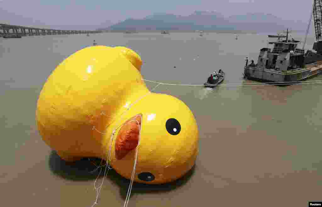 People set up a scale replica of a rubber duck, originally created by Dutch conceptual artist Florentijn Hofman, on a river in Wenzhou, China. (Reuters)