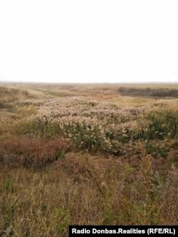 В луганских степях неподалеку от оккупированного города