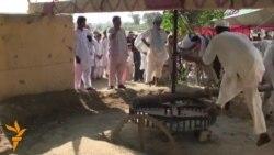 Пакистан. Стерчийн къовсам