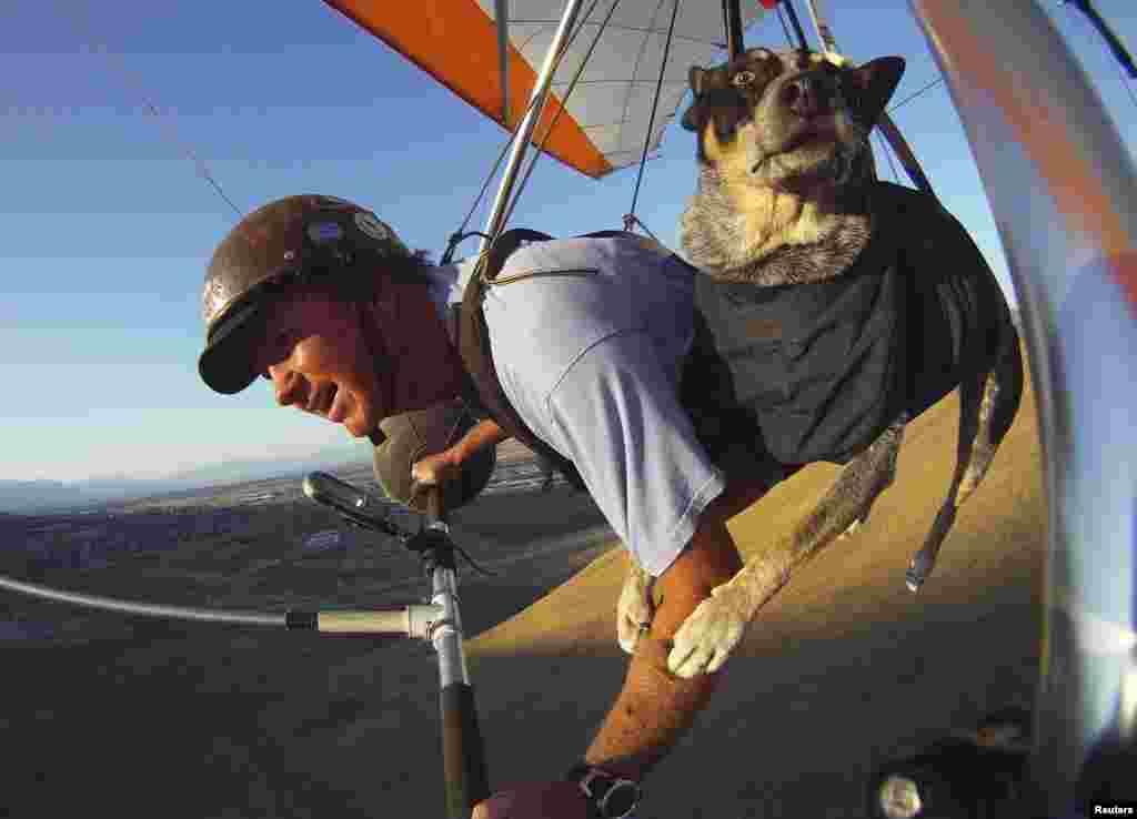 Dan McManus and his service dog Shadow hang glide together outside Salt Lake City, Utah. (Reuters/Jim Urquhart)