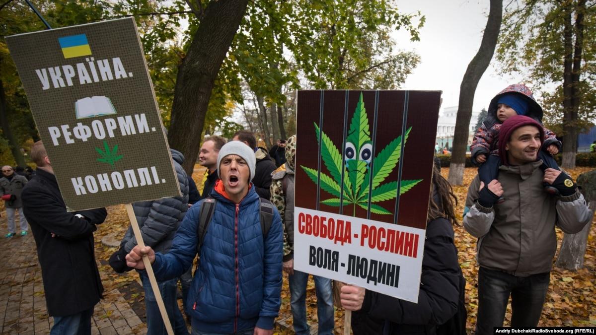В Раде предлагают создать рабочую группу по законопроекту о легализации каннабиса в медицине