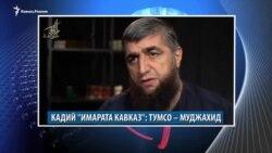Видеоновости Кавказа 14 ноября