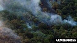Անտառային հրդեհ Հայաստանում, արխիվ