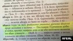 Sporni dijelovi Rječnika CANU-a