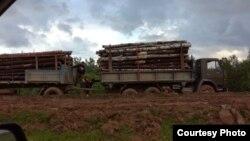 Иркутяне считают, что вырубка леса провоцирует пожары