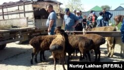 Алматы облысы Жетіген ауылындағы жексенбілік мал базарында. 19 мамыр 2019 жыл.