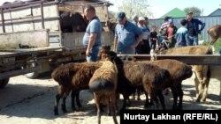 Жетіген ауылындағы мал базары. Алматы облысы, 19 мамыр 2019 жыл.