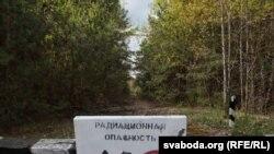 Чарнобыльскія вёскі праз 25 год