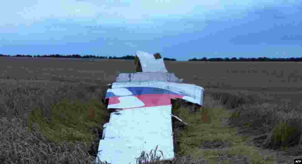 Malaysia Airlines markings are clearly visible on what appears to be a piece of the plane's tail.