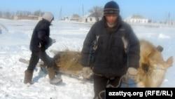 Жители села Белкопа везут камыш.