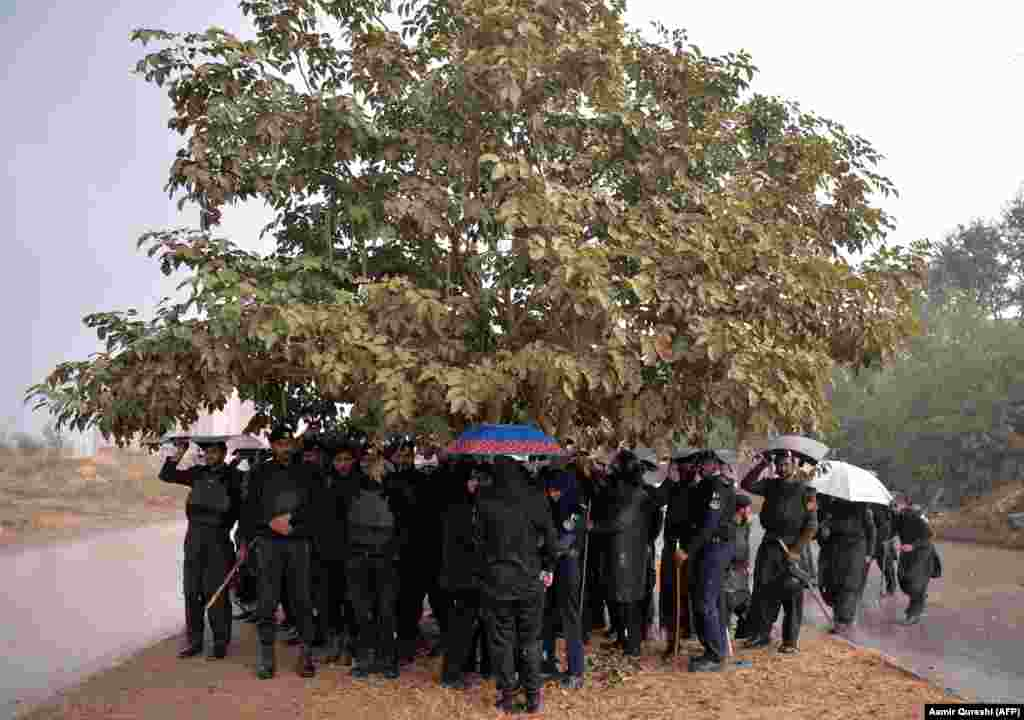 Pakistani police officers gather under a tree during a heavy rain near an Islamabad court where ousted Pakistani Prime Minister Nawaz Sharif appeared on November 15 to face corruption charges. (AFP/Aamir Qureshi)